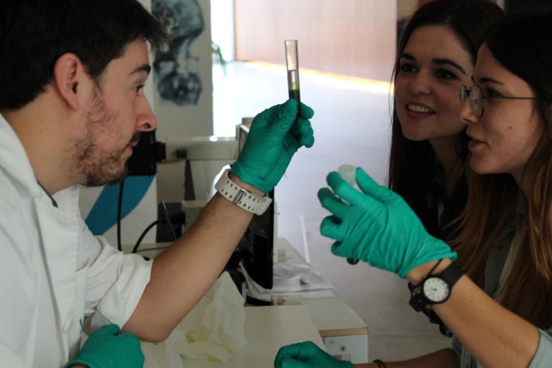 Semana de la Ciencia 2016 - Parque de las Ciencias